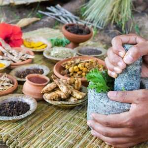 Natural medicine as used in Ayurvedic sessions